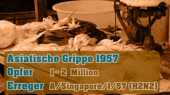 Pandemie - Asiatische Grippe 1957
