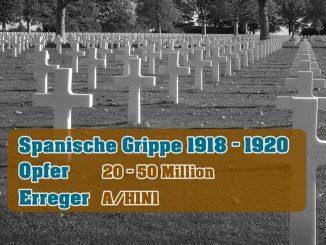 Pandemie - Spanische Grippe 1918 - 1920