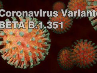 Südafrikanische Coronavirus SARS-CoV-2 Variante Beta B1351