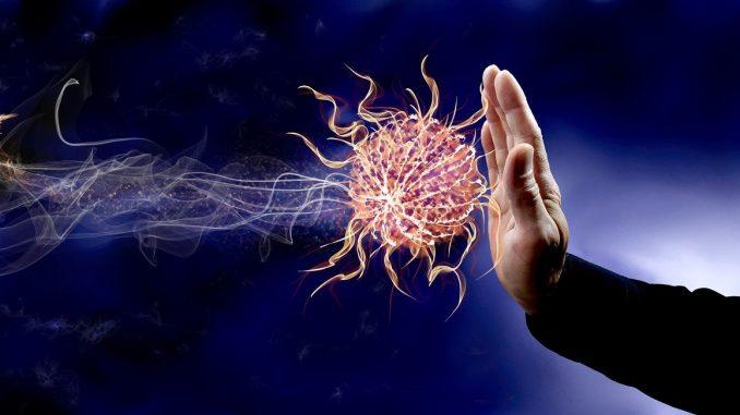 Immunsystem Abwehr