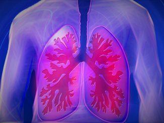 Atemwegserkrankungen Atemwegssymptome